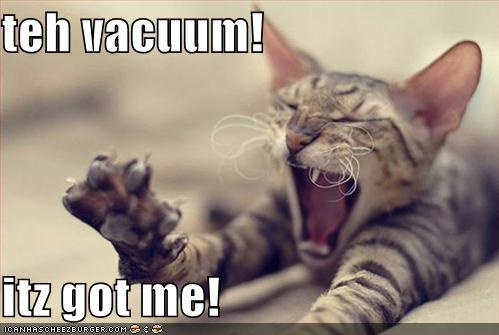 icanhascheezburger vacuum lolcat